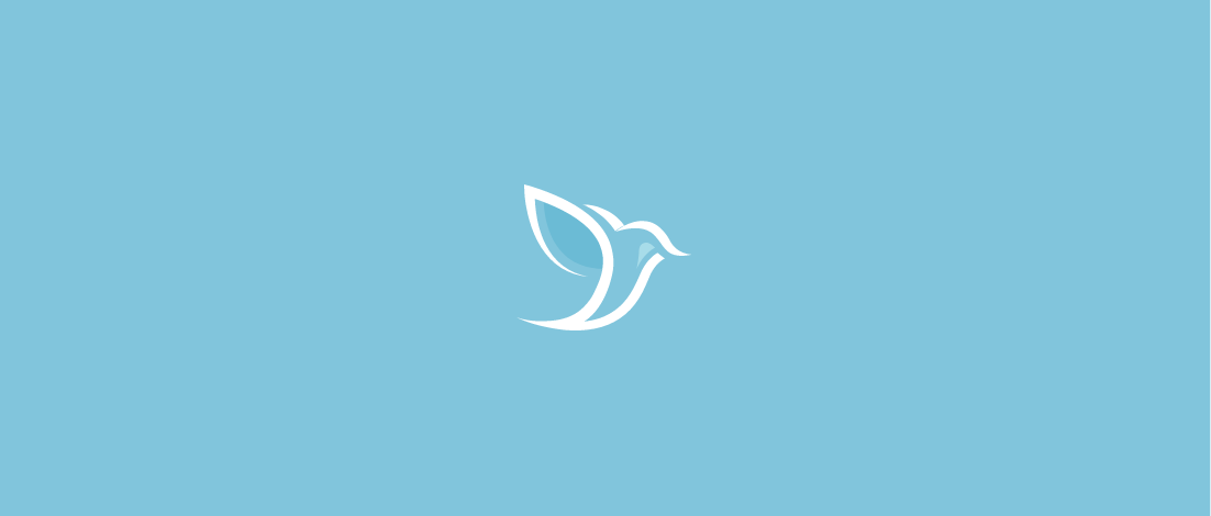 FeatherFriendly_CaseStudy